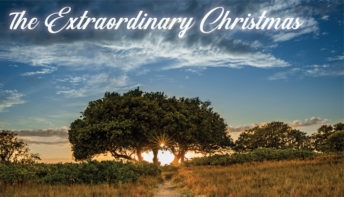 New Series: The Extraordinary Christmas